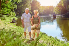 Couples des aînés, été Image stock