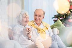 Couples des aînés pendant le Noël Image libre de droits