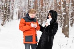 Couples des amis avec un smartphone en nature d'hiver Image stock