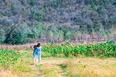 Couples des amis d'adolescente marchant dans la forêt tropicale et merci Photo stock