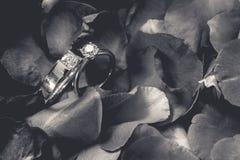 Couples des bagues à diamant sur les fleurs roses plutôt défraîchies de pétale  Photos libres de droits