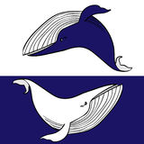 Couples des baleines Photographie stock libre de droits