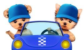 Couples des chiots se reposant dans un cabriolet illustration stock