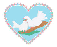 Couples des colombes de blanc de bonbon Photographie stock