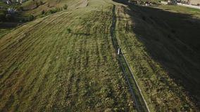 Couples des jeunes marchant le soir d'été de coucher du soleil dans la vue aérienne de champ clips vidéos