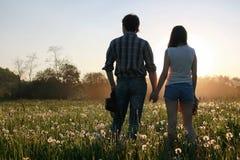 Couples des jeunes marchant le soir de ressort de coucher du soleil dans a Image stock