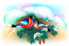 Couples des oiseaux situant sous la neige Image stock