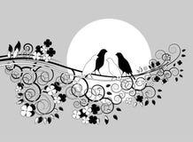 Couples des oiseaux sur le branchement Image stock