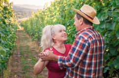 Couples des personnes heureuses une date romantique dans le vignoble Photographie stock libre de droits