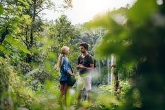 Couples des randonneurs ensemble dans la forêt Photos stock