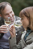 Couples drinking champagne Royalty Free Stock Image