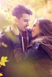 Couples embrassant dans la forêt colorée d'automne photos libres de droits