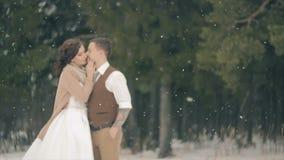 Couples embrassant sur le champ de neige le jour d'hiver banque de vidéos