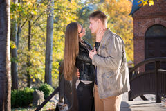 Couples en parc photo libre de droits