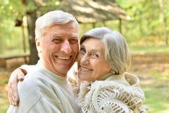 Couples en parc d'été Images stock