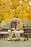 Couples en stationnement d'automne Images libres de droits