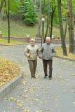 Couples en stationnement d'automne Photos stock