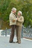 Couples en stationnement d'automne Photographie stock