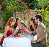 Couples enjoying a healthy outdoor lunch Royalty Free Stock Photo