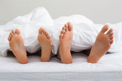 Couples feet sticking out from under duvet Stock Images