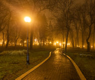 Couples foggy evening in the park Stock Photo