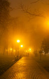 Couples foggy evening in the park Royalty Free Stock Image