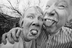 Couples fous collant à l'extérieur des langues Image stock