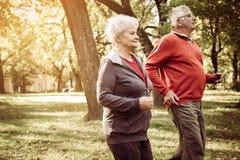 Couples gais d'aînés s'exerçant en parc Photographie stock libre de droits