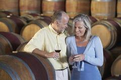 Couples goûtant le vin rouge dans la cave images stock