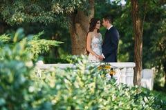 Couples heureux étreignant en parc La jeune mariée dans un costume noir et jeune mariée dans une belle robe de mariage blanche Jo Photographie stock libre de droits