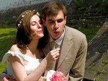 Couples heureux 3 Photographie stock libre de droits