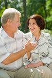 Couples heureux aînés en stationnement Photographie stock