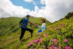 Couples heureux appréciant la vie parmi les rhododendrons fleurissants Images libres de droits