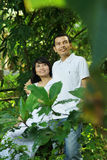 Couples heureux asiatiques Image stock