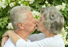 Couples heureux d'aîné Photo stock