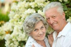 Couples heureux d'aîné Images libres de droits