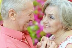 Couples heureux d'aîné Image stock
