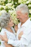 Couples heureux d'aîné Photographie stock libre de droits