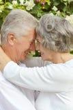 Couples heureux d'aîné Photos stock
