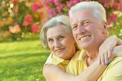 Couples heureux d'aîné Photographie stock
