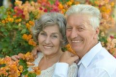 Couples heureux d'aîné Images stock