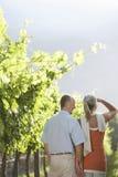 Couples heureux dans le vignoble Photographie stock libre de droits