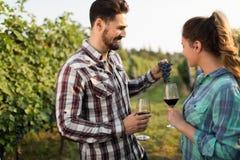 Couples heureux dans le vignoble avant la moisson Photo stock