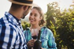 Couples heureux dans le vignoble avant la moisson Photo libre de droits