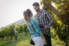 Couples heureux dans le vignoble avant la moisson Photos libres de droits