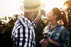 Couples heureux dans le vignoble avant la moisson Photographie stock