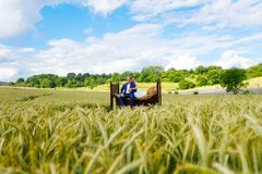 Couples heureux de mariage dans le domaine de blé photos libres de droits
