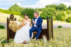 Couples heureux de mariage dans le domaine de blé Photo libre de droits