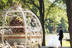 Couples heureux de mariage de conte de fées marchant en parc avec des chevaux Photographie stock