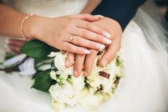Couples heureux de mariage, jeunes mariés Images libres de droits